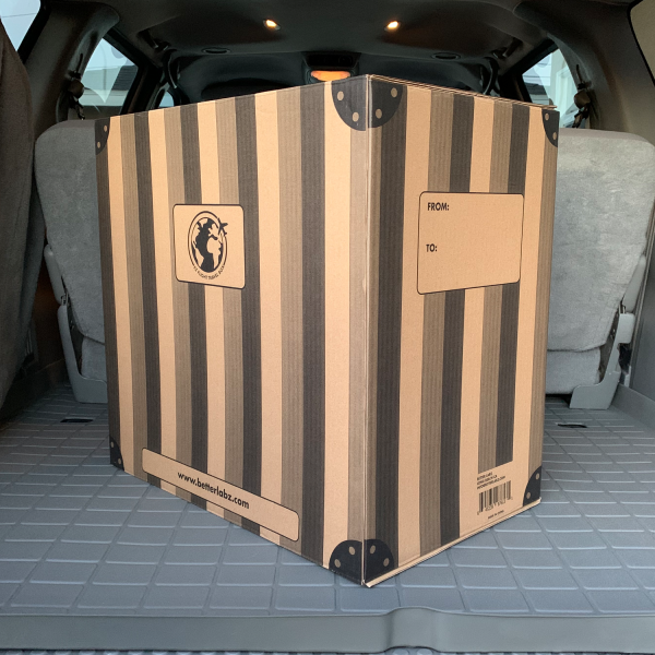 Air Ready Travel Box - Check- in read